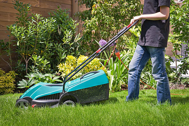 Components of Lawn Care Service Plans